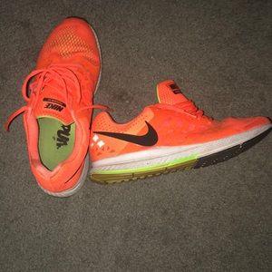 Nike Pegasus 31